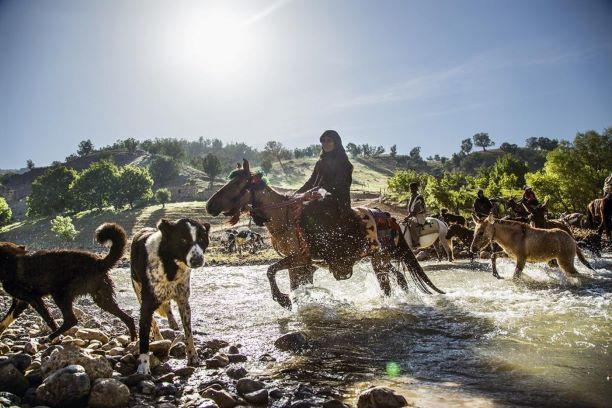 Bakhtiari nomads tour